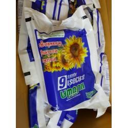 Hạt giống hoa hướng dương AGUARA 6