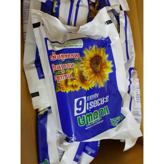 Hạt giống hoa hướng dương Aguara 6 Thái Lan