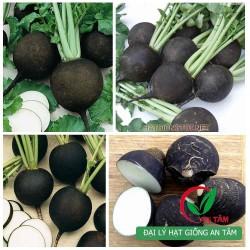 Hạt giống củ cải đen