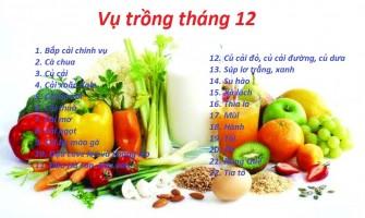 Mùa vụ trồng rau các tháng - tính theo tháng dương lịch