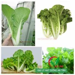 Hạt giống rau cải bẹ dún