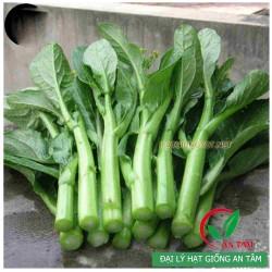 Hạt giống rau cải ngồng