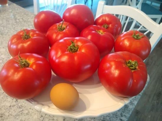 Giống cà chua beef mẫu mã cực đẹp